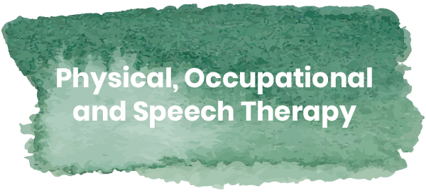 Physical, occupational and speech therapy